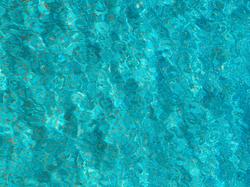 Pool Curt Wills-Stiftung