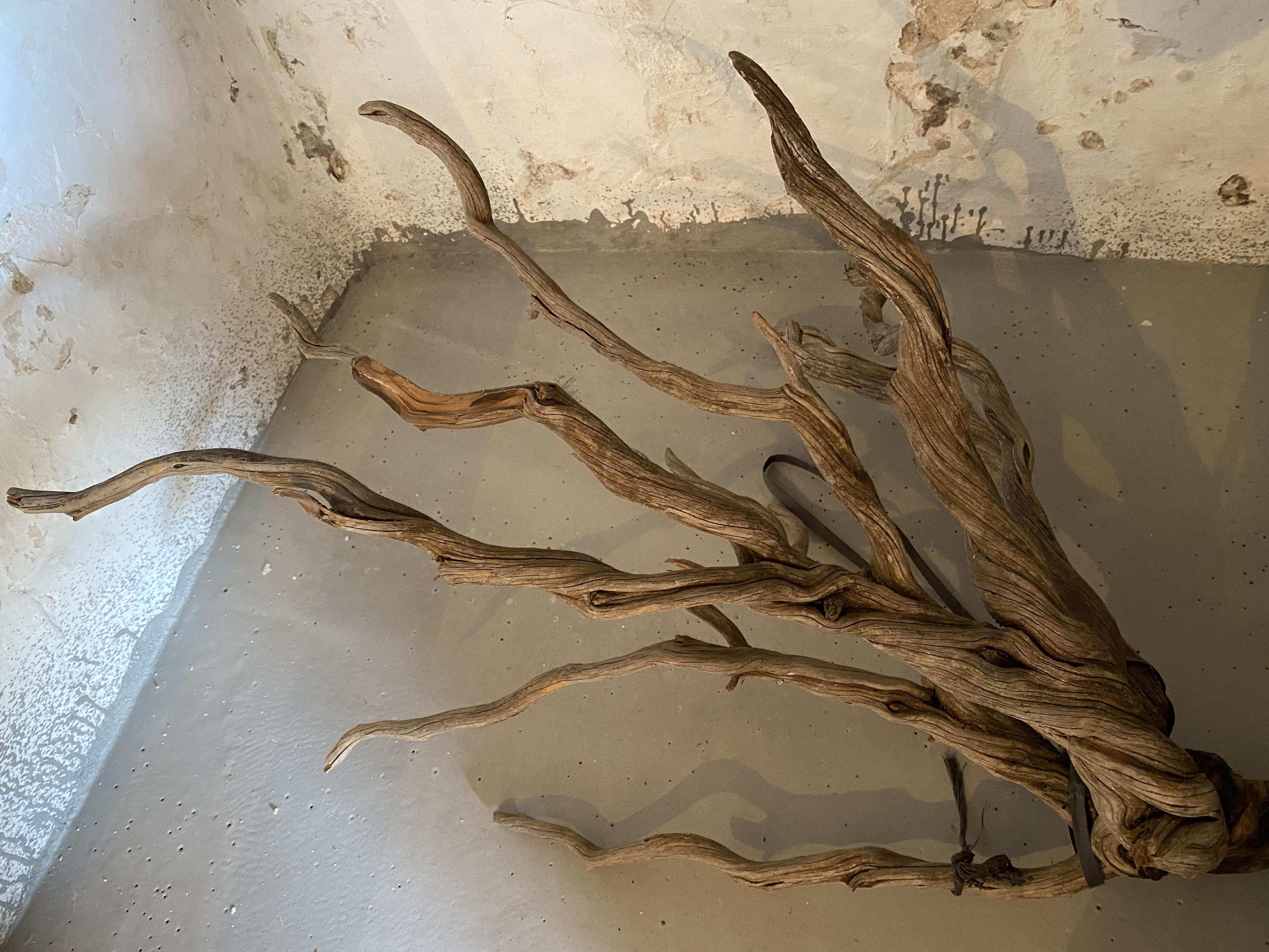Skulptur 2 Curt Wills-Stiftung