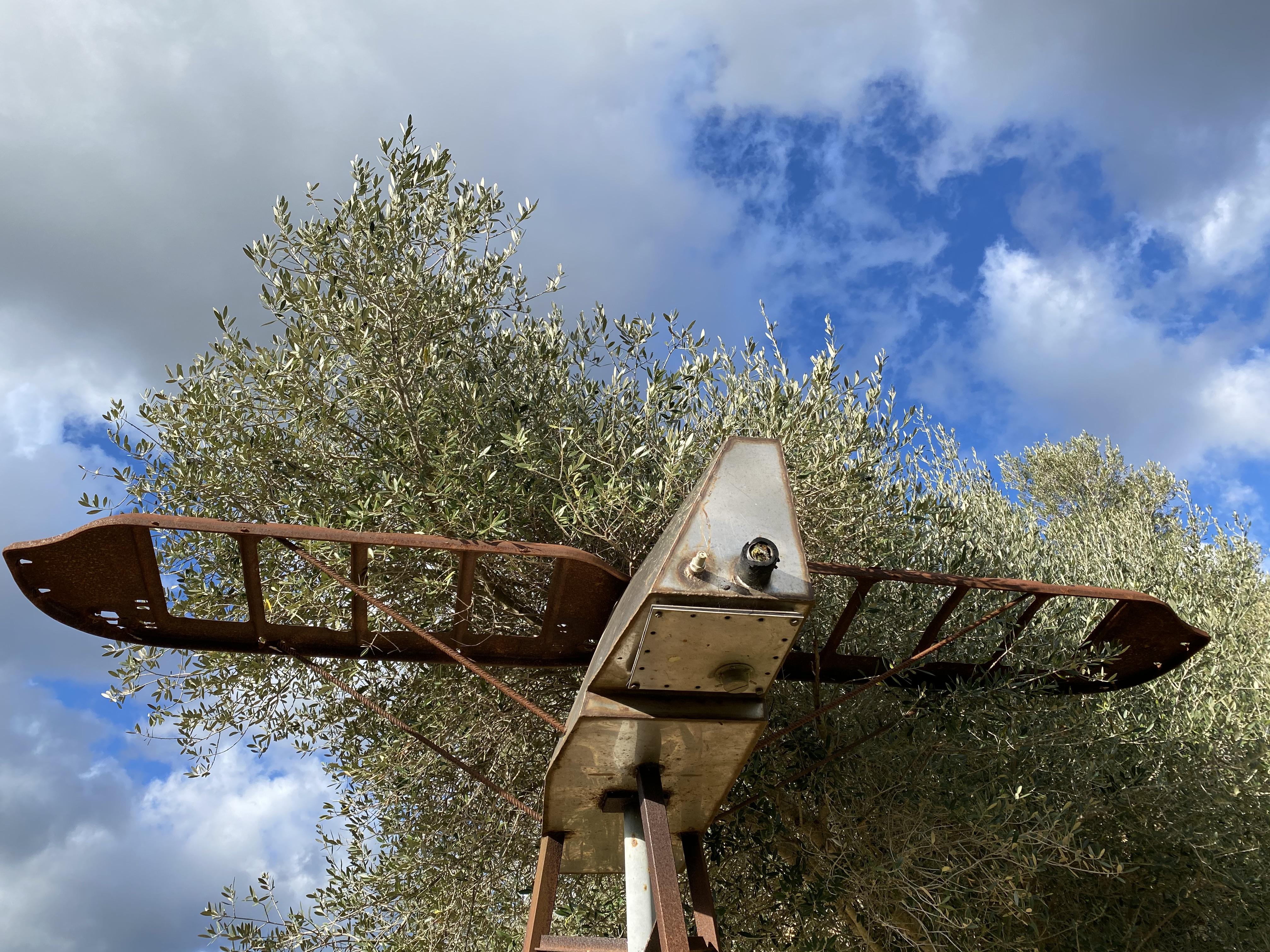 Skulptur Curt Wills-Stiftung