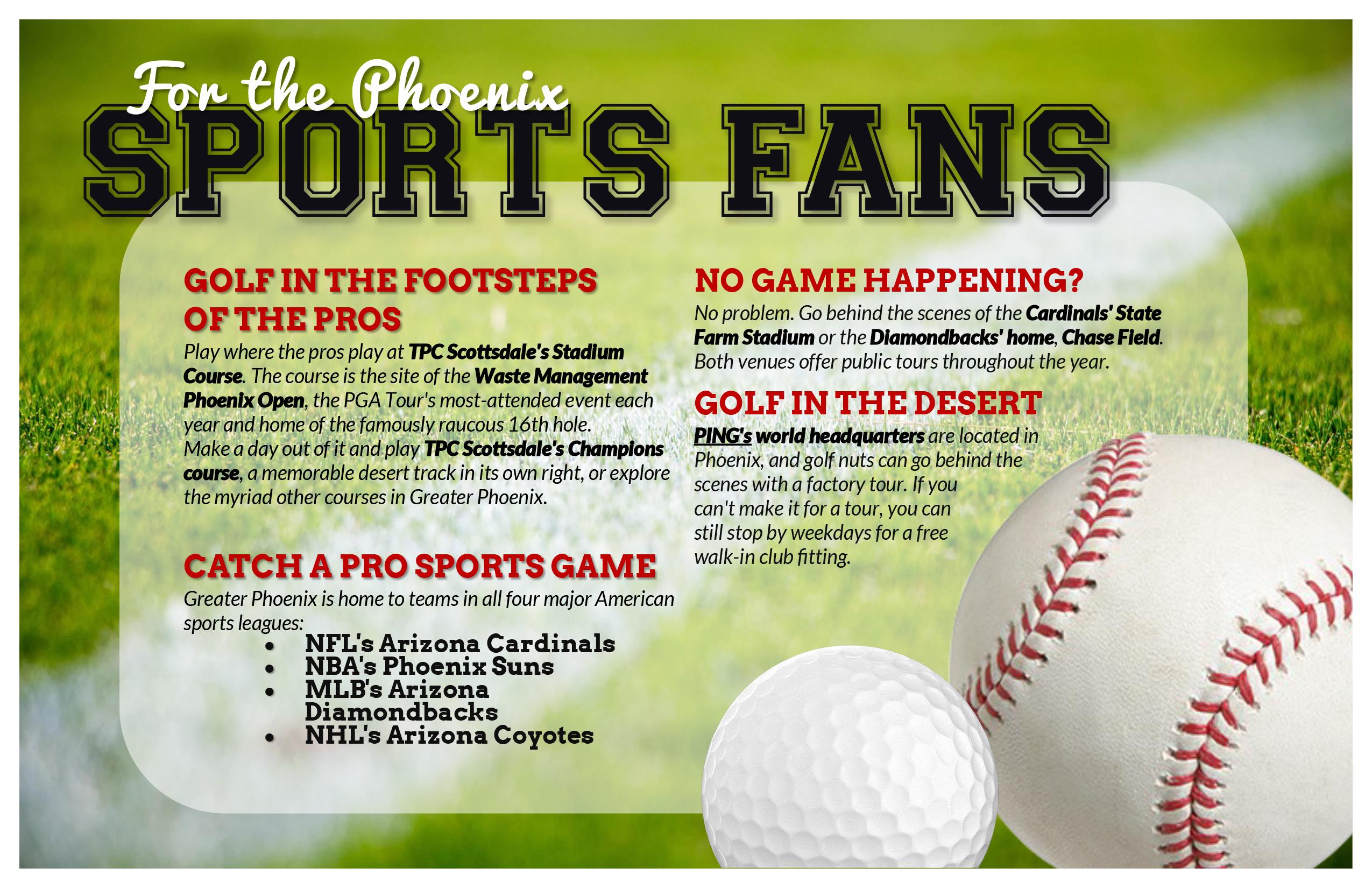 Phoenix Sports Fans