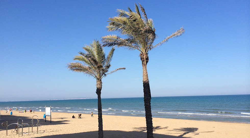 Guadamar Summer Beach Holidays
