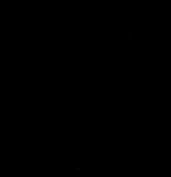 NV Logo Vectorial(Web Use).png