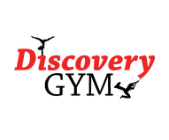 discovery-logo-blackOUTLINES-red2.png