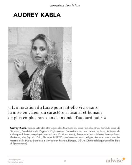 livre-blanc-adetem-adwise-research-audre