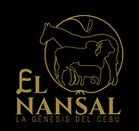LOGOTIPO-EL-NANSAL_VF_negro_edited.png