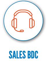 Sales BDC.png