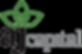 AJ Capital - Logo - Davehunt International Client