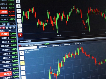 Understand The Employee Stock Option Program (ESOP) for Start-Up Companies