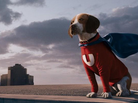The Underdog Effect: Psychology and Real Life Examples