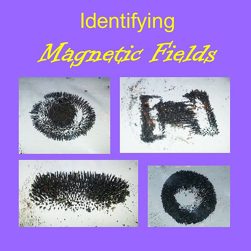 Identifying Magnetic Fields Lesson Plan