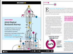 This Digital Business Survey by IDG