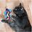 Thumbnail: Kong Better Buzz Gecko Catnip Toy