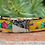 Thumbnail: Diva Dog Metal Clasp Dog Collars (Size Small)