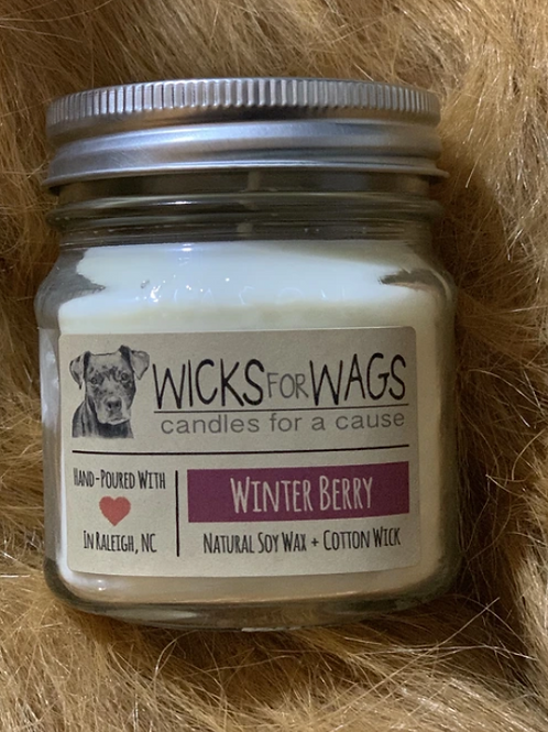 Wicks for Wags Winter Berry Candle