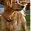 Thumbnail: Rubit! Curved Dog Tag Clip