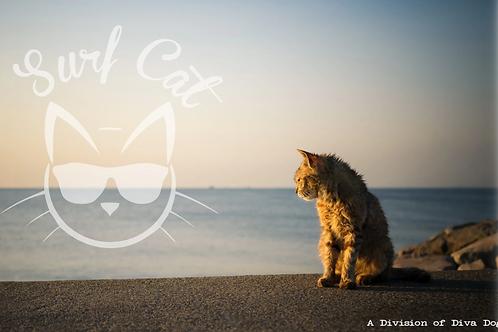 Surf Cat Collars (Breakaway)