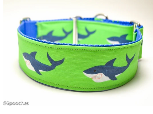 3Pooches Shark Attack Collar in Limes  (multiple sizes)