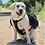 Thumbnail: Baydog Saranac Harness/Hiking Backpack