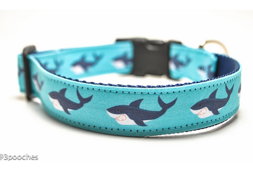 3Pooches Shark Attack Collar in Teal (multiple sizs)