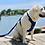 Thumbnail: Baydog Hudson Bay Leash