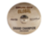Drumoff Global Drum Off Global 2019 Cymbal Trophy