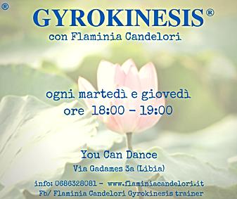 GYROKINESIS 2017 (2).png