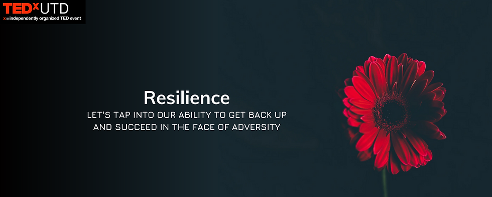 Resilience2.png