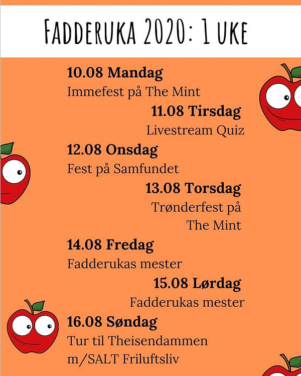 Skjermbilde 2020-08-09 kl. 14.13.19.png