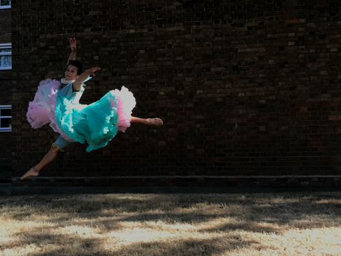 Anesta Leaps
