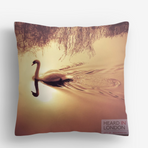 cushion2.png