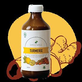 turmerix.png