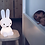 Thumbnail: Miffy My First