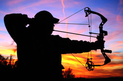 adventures-archery-tampa-florida-bow-hunting-2.jpg
