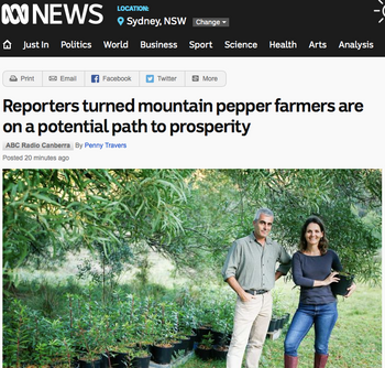 Australian Mountain Pepper on ABC News.