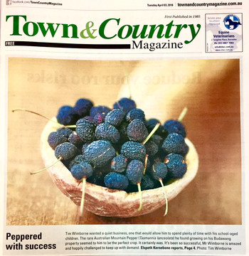 Town & Country Magazine.