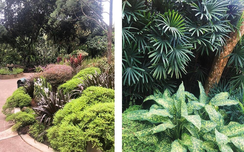 SIngapore Botanic Garden - The Chunk List