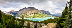 Panoramic View Of Peyto Lake And Rocky Mountains, Alberta.jpg