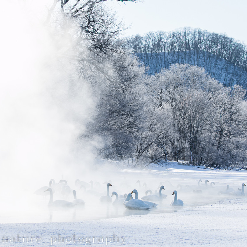 Lake Kussharo, Febr 2019