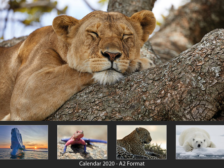 X-mas Gift: New Martin Fromer Nature Photography Calendar 2020 Available