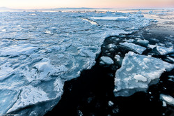 Black sea and ice