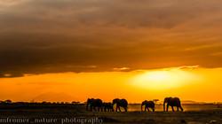 Sunset Amboseli NP