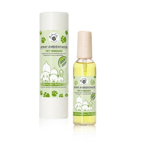 Spray Stop Odor Morning Drew