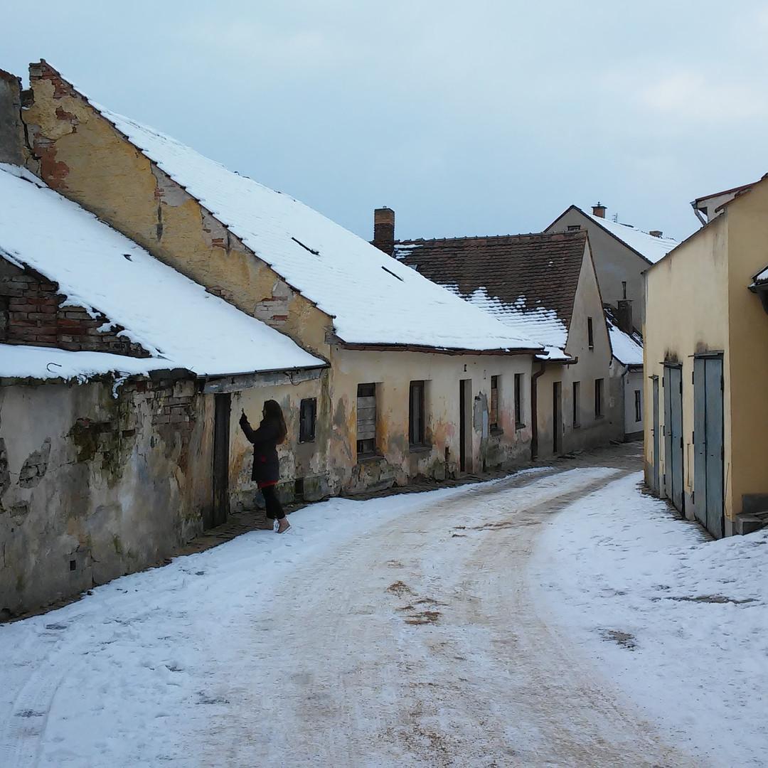 Winterschule Telc1_Tereza _ivrn_.jpg