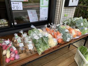 11/8 野菜販売します