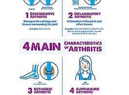 4 Main Characteristics of Arthritis - En