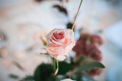 timeofyourlife Hochzeitsplaner Weddingplaner Niederösterreich Wien Burgenland Studeny Hochzeitochzei