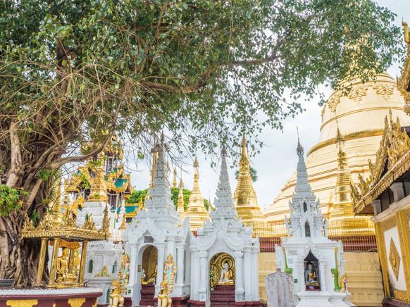 Shwedagon Pagoda II