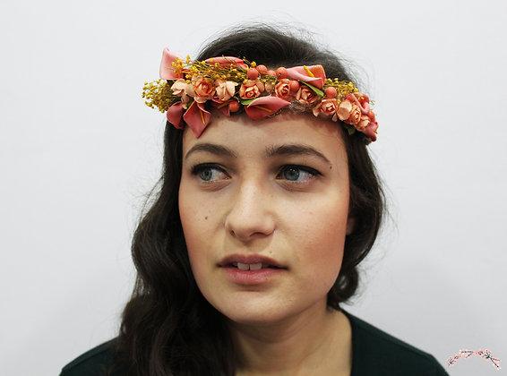 Semicorona Fiona