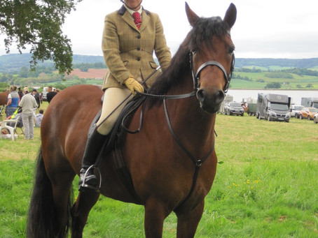 New for 2019 - Mixed Disciplines Pony/Horse Show and Fun Dog Show - Sunday 18 August 2019
