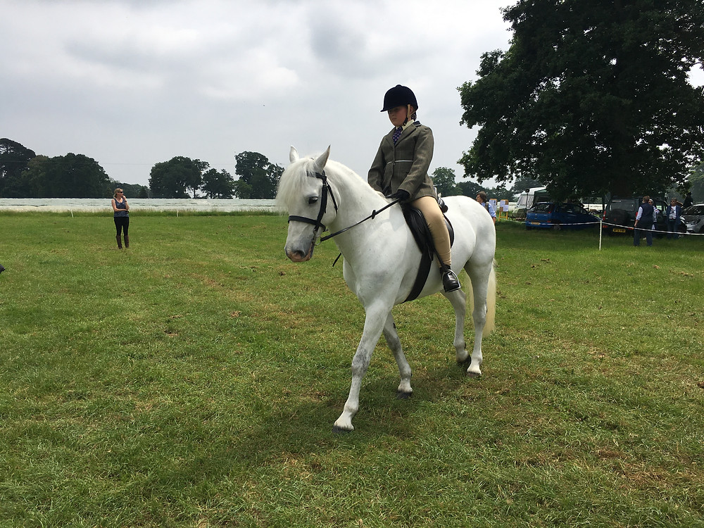 Showing Clinic - Tips and Tricks for the Show Ring